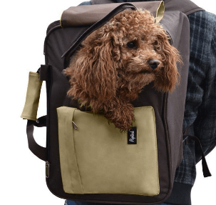 Comfort Small Dog Travel Carrier Backpack