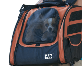 Traveler Roller Backpack for cats and dogs