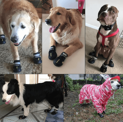 Dog Boots Waterproof Shoes for Large Dogs
