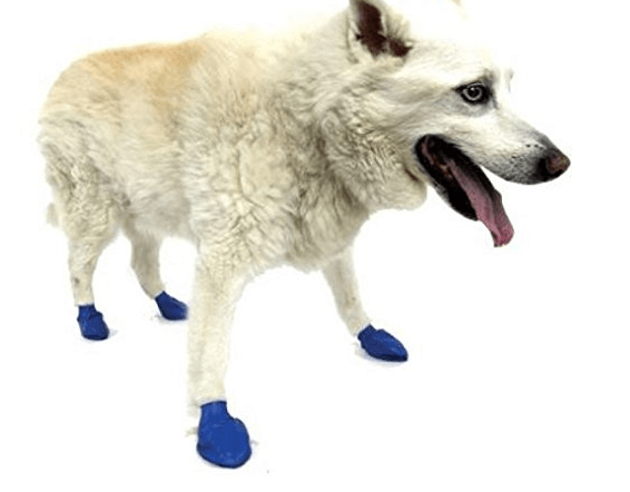 Pawz Water-Proof Dog Boot