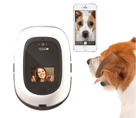 PetChatz HD two-way premium audio HD video pet treat camera