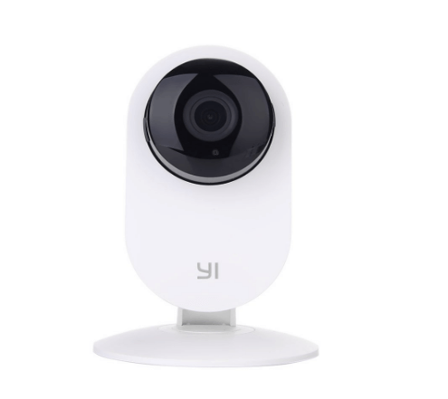 YI Dome dog camera