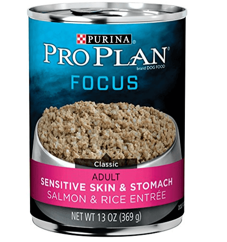 Focus Sensitive Skin & Stomach Salmon & Rice Entre Classic Wet Dog Food