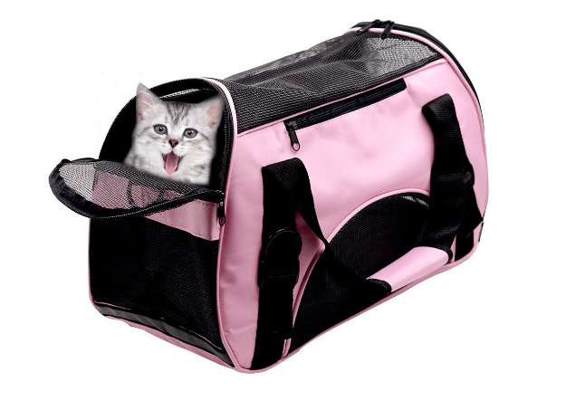 Pet Carriers For Dog & Cat, Comfort Airline Approved