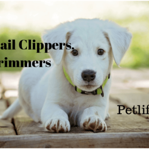 Best Dog Nail Trimmers