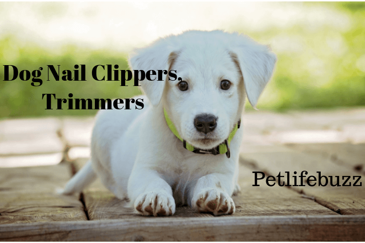 Top Rated 50+ Best Dog Nail Trimmers 2018 (Trimmers, Clippers, Grinders, Files)