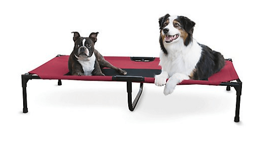 Creative Solutions Elevated Red Dog Bed Large