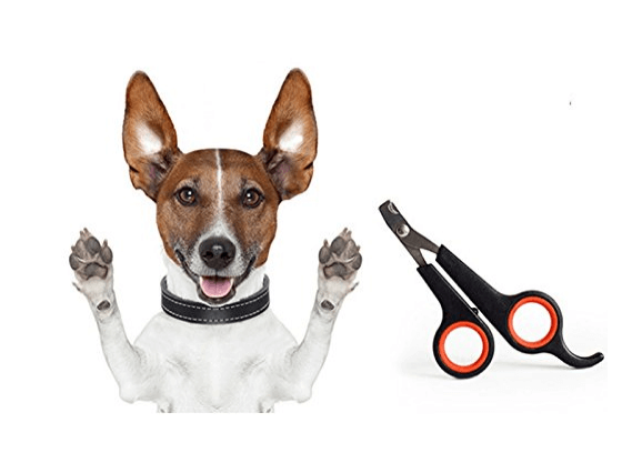 Dog Puppy Stainless Steel Trimmer