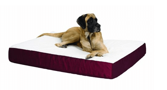 Double-Thick Ortho Pet Bed
