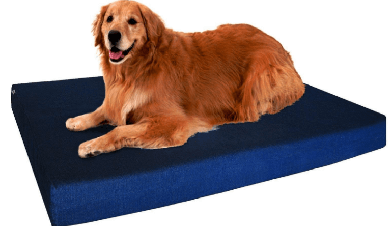 Extra Large Orthopedic Memory Foam Dog Bed