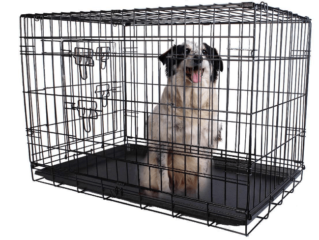 Giantex 2 Doors Wire Folding Pet Crate Dog