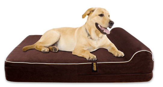 Orthopedic Memory Foam Dog Bed With Pillow