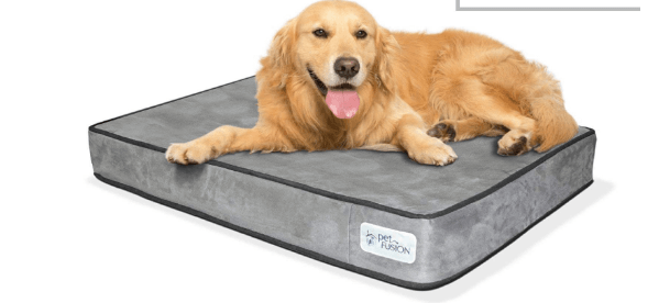 PetFusion Memory Foam Dog Bed