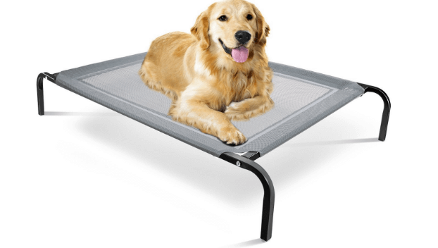 Travel Gear Approved Steel-Framed Portable Elevated Pet Bed
