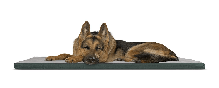 Two-Tone Pet Bed Crate or Kennel Pad Dog Bed