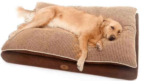50 Best Large Dog Beds 2019 (Orthopedic, Arthritis, Machine Washable)