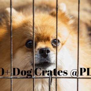 best large dog crates