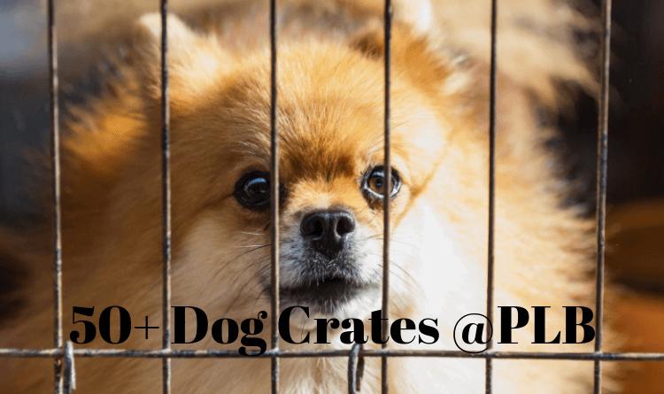 best large dog crates