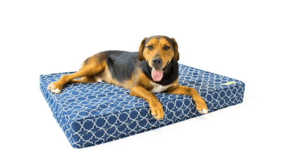 eLuxurySupply Orthopedic Dog Bed