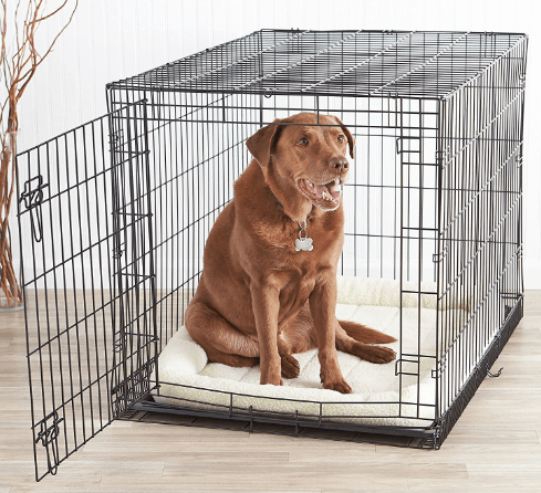 AmazonBasics Single-Door Folding Metal Dog Crate