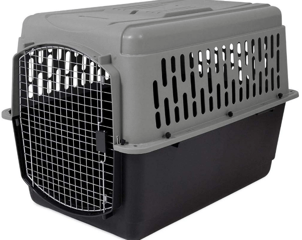 Aspen Pet Porter Heavy-Duty Pet Carrier with Secure Lock