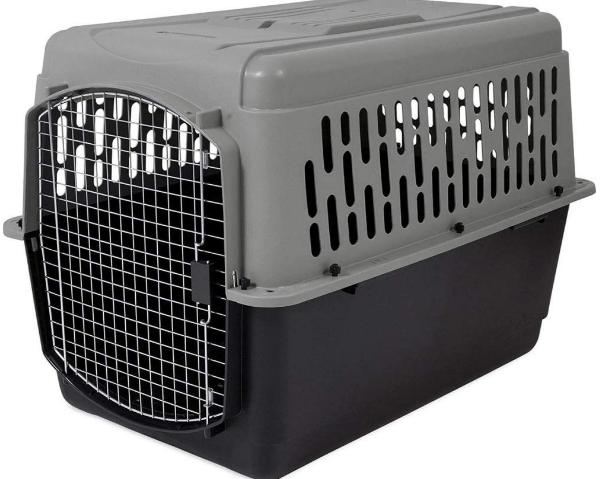 Aspen Pet Porter Heavy-Duty Pet Carrier with Secure Lock