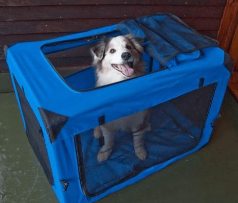 Pet Gear 3 Door Portable Soft Crate
