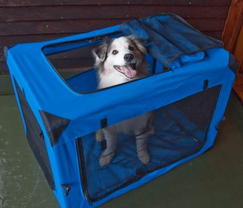 Pet Gear 3 Door Portable Soft Crate
