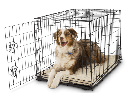 Petco Classic 1-Door Large Dog Crate