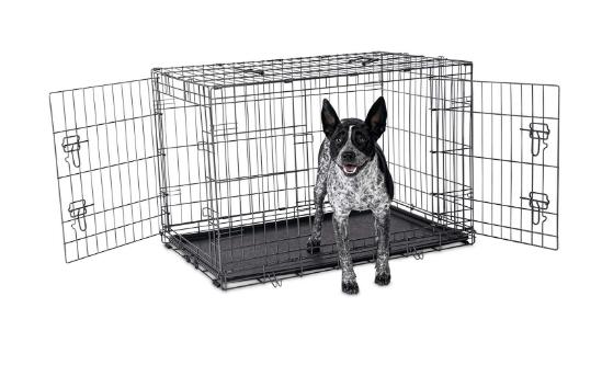 Petco Premium 2-Door Dog Crate