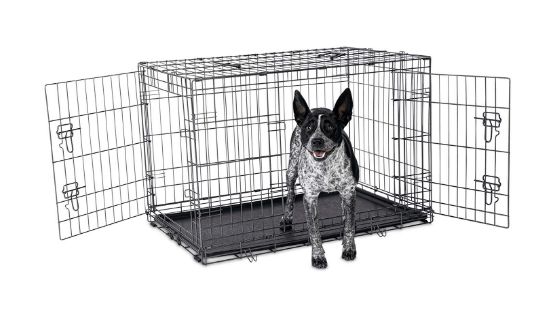 Petco Premium 2-Door Dog Crate