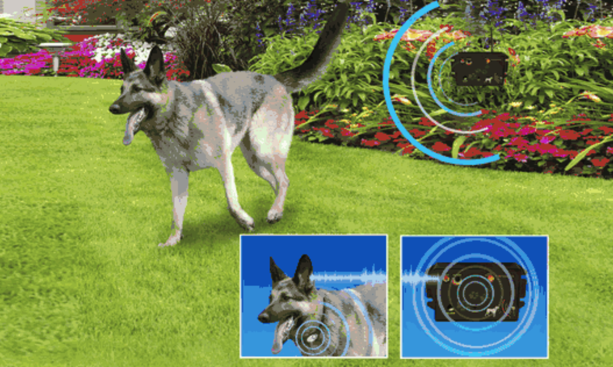 Invisible Barrier Fence Containment System Additional Extension Anti-Escape Fence for Dogs Anti-Escape Fences for Dogs TOPQSC Electric Dog Fence Gate