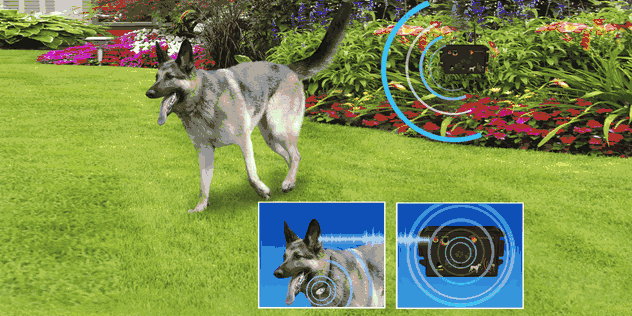 50 Best Wireless Dog Fence Systems 2019 (Review & Recommendations)