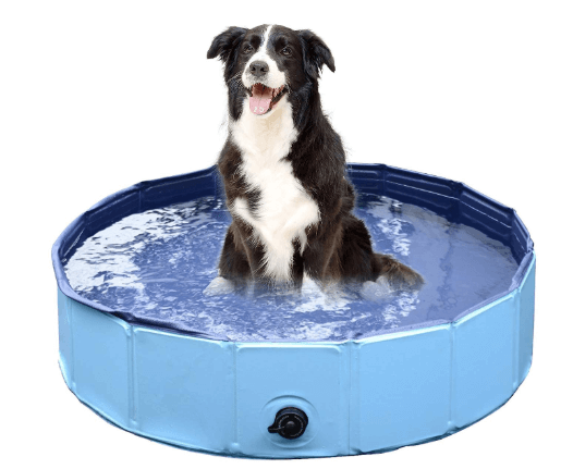 Foldable Dog Pet Bath Pool