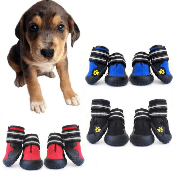 types of dog boots