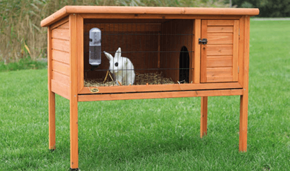 30+ Best Indoor Rabbit Cages in 2020 (Reviews Included) Rabbit House Plans Perfect on rabbit cages, rabbit blueprints, rabbit glass, rabbit couple, snare trap plans, rabbit hutch, rabbit making a home, rabbit playground, rabbit beauty, rabbit shit, rabbit housing, rabbit pens, rabbit fart, rabbit runs product, rabbit engineering, rabbit houses outdoor, rabbit houses and sleeping quarters, rabbit runs and houses, rabbit condo,