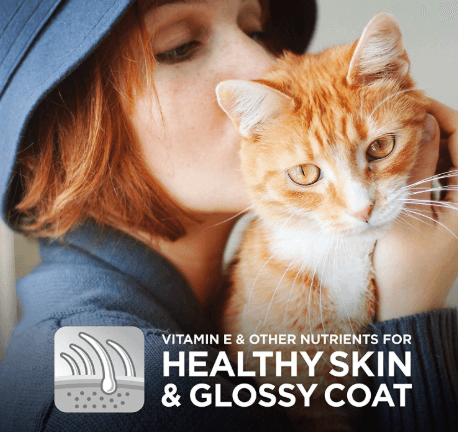 Keep a healthy skin and coat