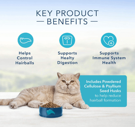 Your solution to cat hairball prevention