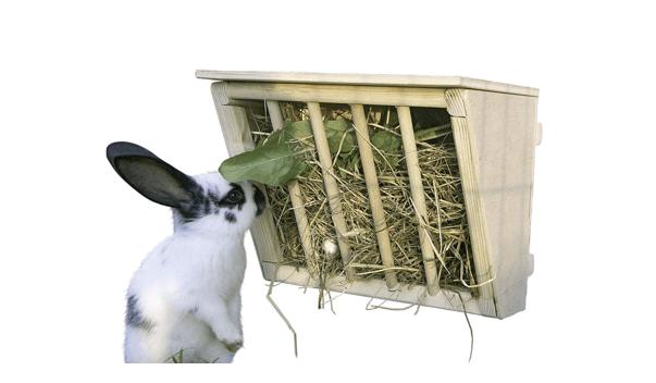 Benefits of a hay rack