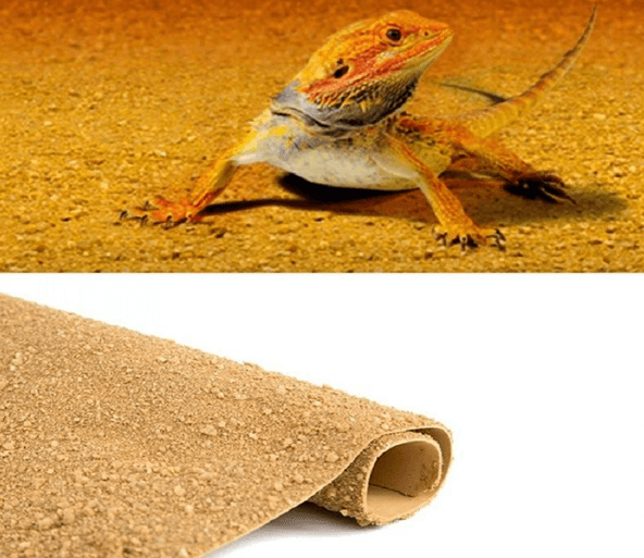 Choosing a bearded dragon substrate