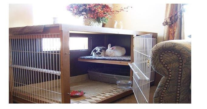 Bunny cages indoor