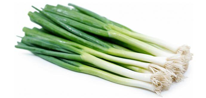 Can Rabbits eat green onions